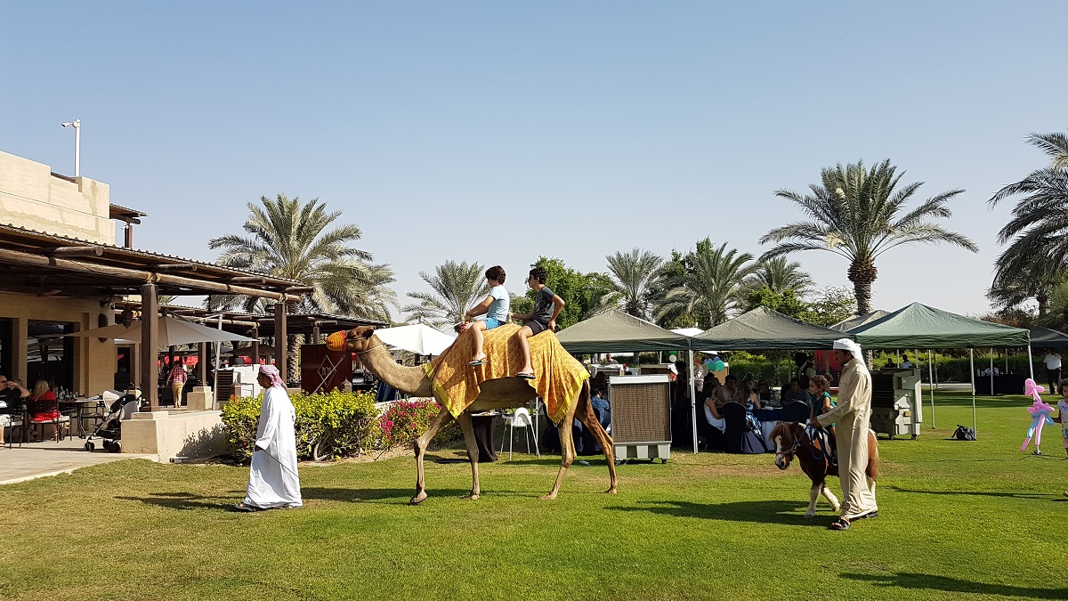 Friday Farmers Brunch - Activties - Bab Al Shams (06)