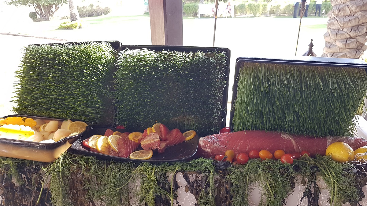 Friday Farmers Brunch - Signature Dishes - Bab Al Shams (24)